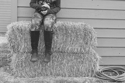 I really like this image.  It doesn't highlight a narrow depth of field so much, but I really like the composition and detail of the legs and hay bale.