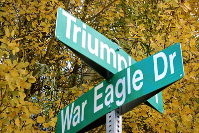 "This is a composition that works well centered.  The background is pretty similar in all directions so it does not need to be weighted to either side.  That said, I would make sure the sign is vertical it is leaning slightly to the right and that the ""War Eagle Dr"" portion is not cropped out of the frame."