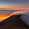 Adrift San Francisco, CA   Marine fog rolls over the Golden Gate Bridge as seen from Slacker Ridge.