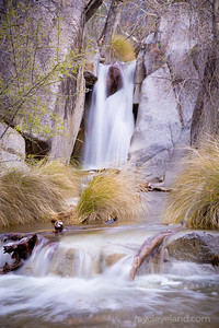 """The """"Secret Waterfall"""" In Madera Canyon"""
