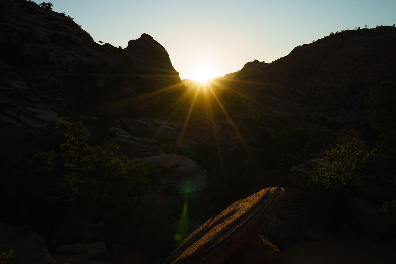 Canyon Overlook Sunrise   Zion National Park, UT