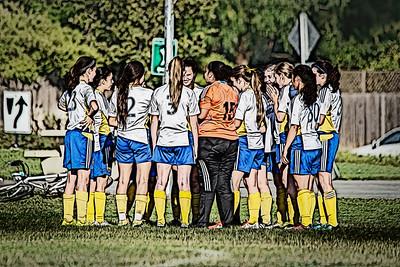 BOCA 2014 99 Girls U15 Silver