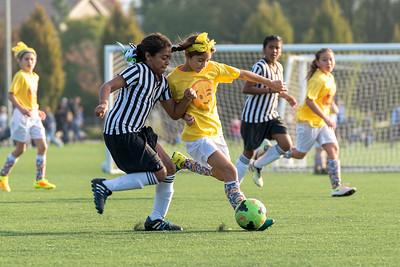 Union Sacramento FC 06 Girls U11 grey