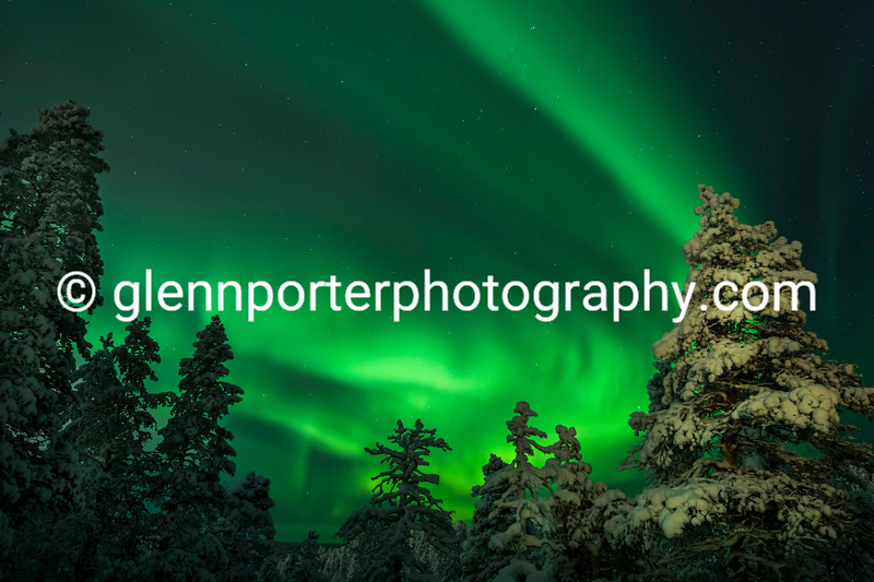 Northern Lights, Aurora in Saariselka, Finland taken from the Aurora Hut.