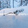 Small branch, snow scene at Saariselka, Finland.