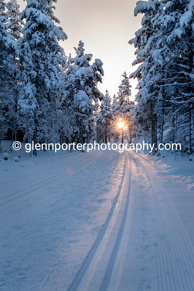 Cross country ski track.