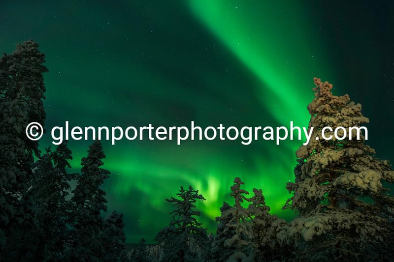 Northern Lights, Aurora at Saariselka, Finland, taken from the Aurora Hut.