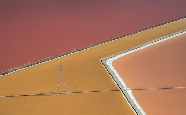 Salt Pond #30