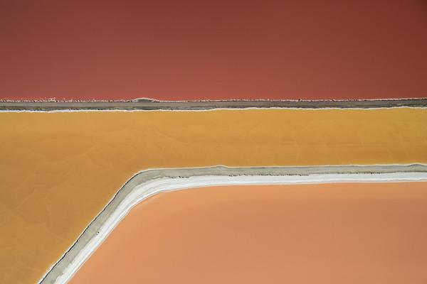 Salt Pond #3