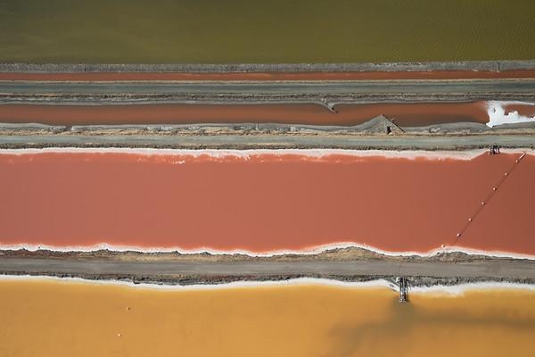 Salt Pond #15