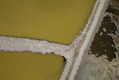 Salt Pond #26