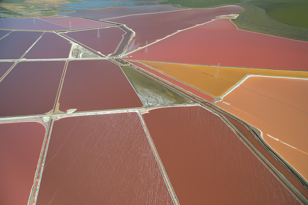 Salt Pond #43