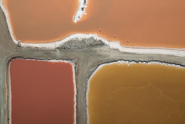 Salt Pond #29
