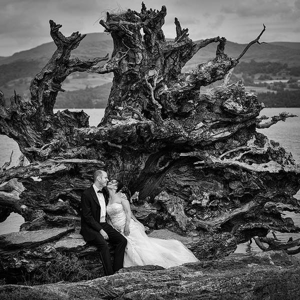 Jasmine and Martin, The Old Tree Stump