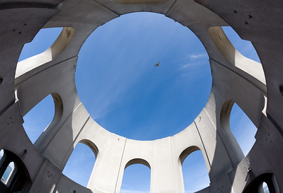 Coit Tower, Eagle