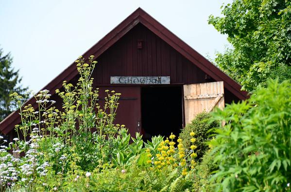 Herb Garden at Domkirkeodden museum