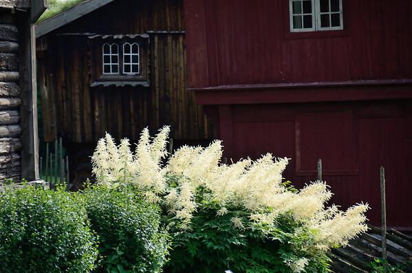 Old farmhouses