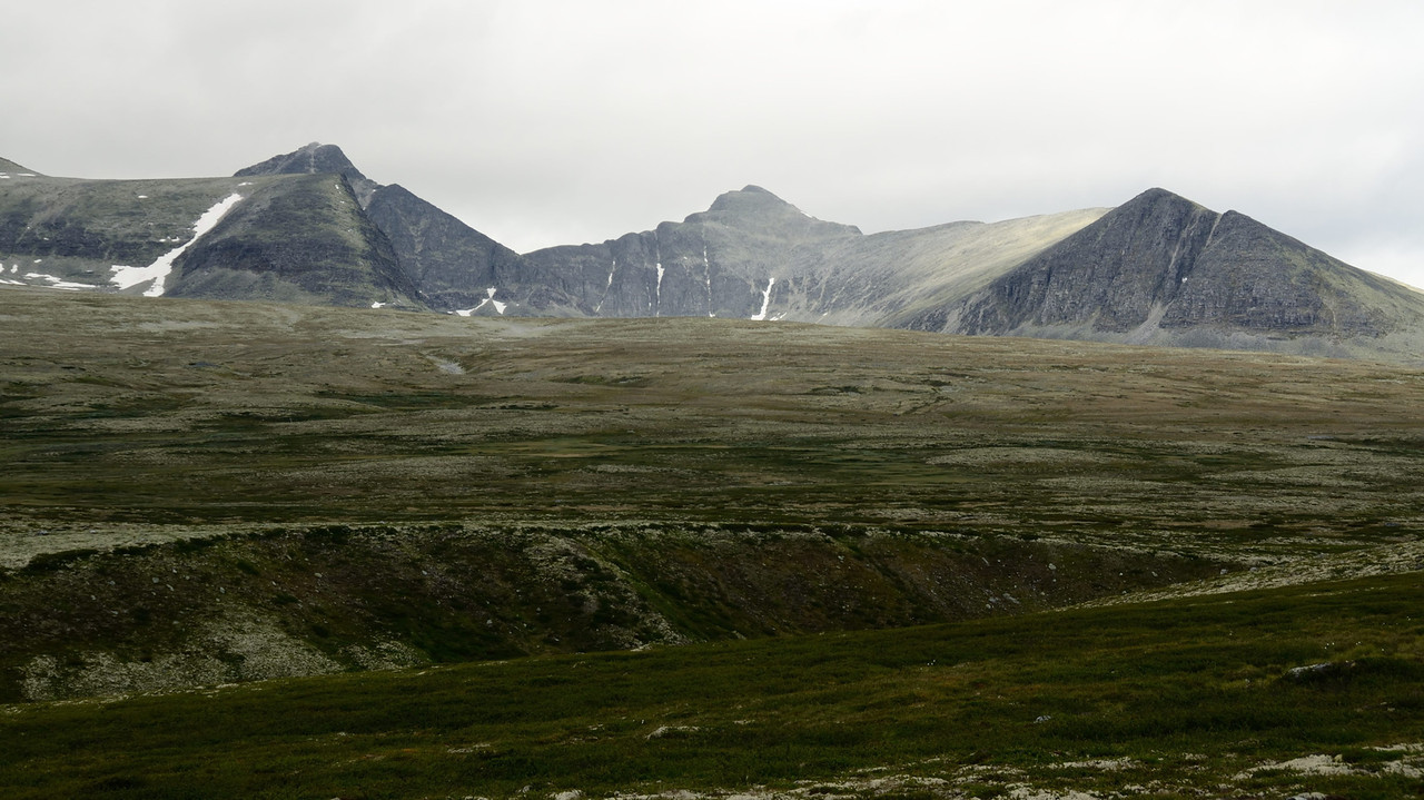 Rondane lichen covered rocks