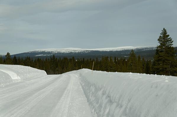 Hedmark Vidda: Öyungen mountain area