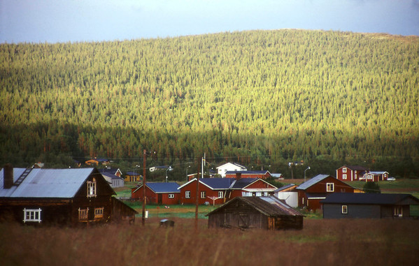 Ljungdalen after rain