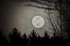 "<div class=""jaDesc""> <h4> Full Moon Rising #2 - March 24, 2016</h4> <p></p> </div>"