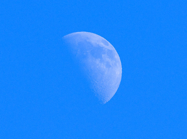 """<div class=""""jaDesc""""> <h4>Half Moon at Noon - January 23, 2010 </h4> <p>We had a gorgeous clear blue sky today.  The moon was very visible rising in the east.  It was well above the horizon when I took this shot at noon.</p> </div>"""