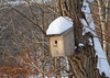 "<div class=""jaDesc""> <h4> Snow-covered Wren Nest Box - December 31, 2012 </h4> <p> In another 4 months, wrens will find this nest box.  Right now it has been adorned by our first snow storm.</p> </div>"