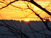 "<div class=""jaDesc""> <h4> New Year's Eve Sunset - December 31, 2010</h4> <p> This dazzling sunset was the last one for 2010. It may be a harbinger for a good year ahead.</p> </div>"