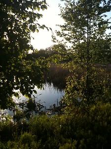Westchester Lagoon, Anchorage
