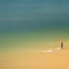Wonder at the Shore~