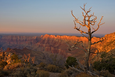 Grand Canyon Last Light