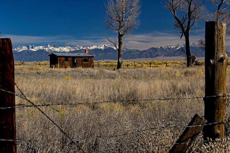 Cabin Solitude