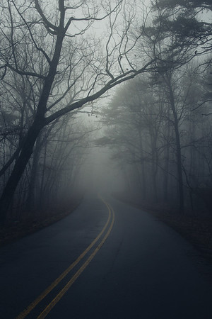 """Winter Fog"""
