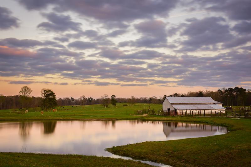"""""""Lucy's Farm"""""""