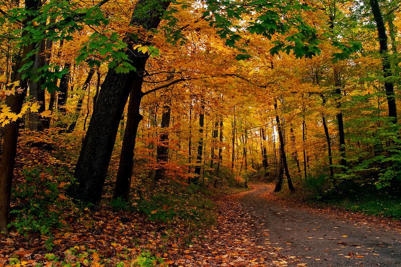 Spring Grove Cem Trail 1
