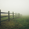 """Fence In The Fog"""