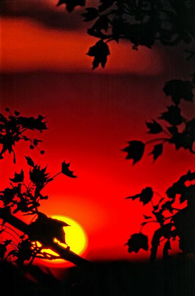 Sunset MPv