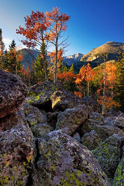 RMNP Autumn 1