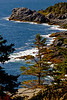 Monhegan Coast Close-up