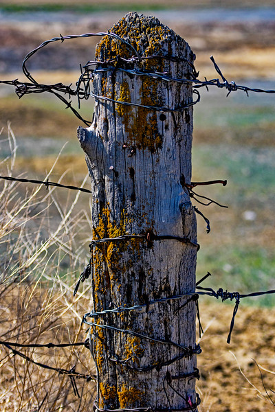 Barbwire Post