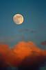 Estero Moon