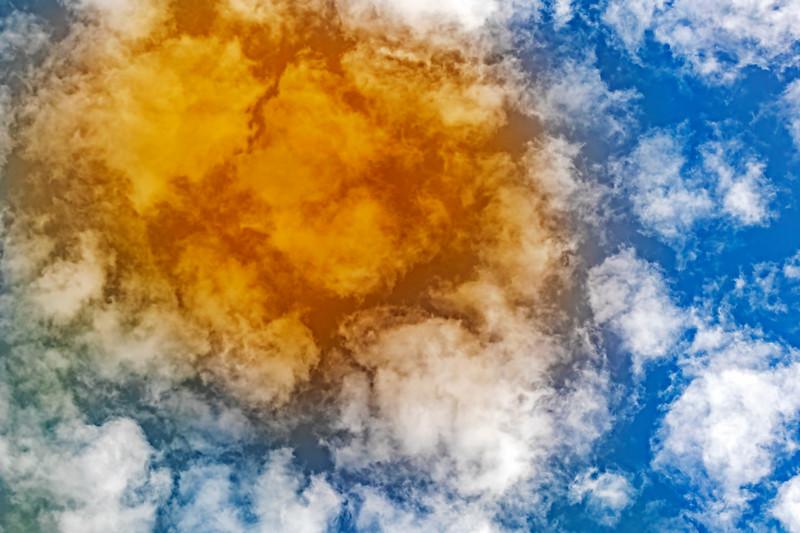 Flower Clouds