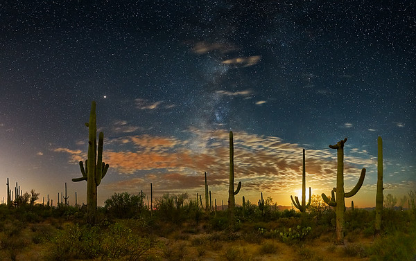 Saguaro Moonset - Saguaro National Park, Tucson, Arizona<br /> *<br /> Nikon D5, 14-24mm f/2.8, f/2.8, 30sec, ISO5000<br /> *<br /> After spending a week in Southern New Mexico for work, I decided to stop in Tucson on the way back to California for a couple of days.  I planned to shoot the Milky Way.  I think I described before how difficult it is to plan any Milky Way shooting session.  The moon is a big consideration.  The orientation of the Galactic Center is another.  Turned out, this time of the year is a pretty good choice for Tuscon night shooting because the Galactic Center is to the Southwest not long after the moon set.  That's good because it's away from the Tucson lights.<br /> *<br /> Tucson is an interesting night sky city because it promotes street lights that don't indiscriminately shine light into the sky.  Still, it's a big city and even with initiatives like that, the skies aren't perfectly dark.  Saguaro National Park is neat because the western unit is no the opposite side of a small mountain range from the center of Tucson, making night photography possible.  In fact, I probably saw at least three other photographers—including a group with a model wearing a white dress out there doing night photography.  <br /> *<br /> This image is a multi-image composite of about 20 captures.  A series of captures were made for the sky.  Another set for the foreground using techniques to control the noise from shooting long exposure.  <br /> __________<br /> #Nikon #Nikonphotography #naturephotography #nightphotography #night #astrophotography #tucson #milkyway