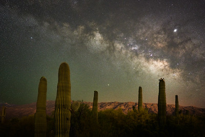 Saguaro and Milky Way #1