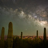 Saguaro and Milky Way #1