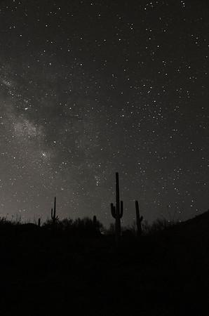 Night At Saguaro National Park