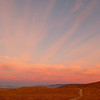Antelope Valley Poppie Preserve Sunrise