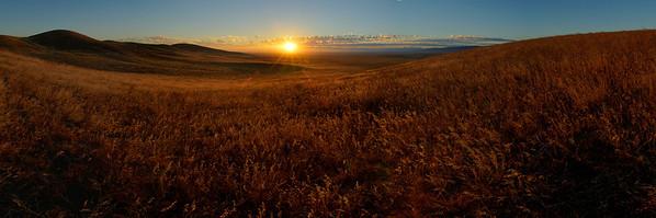 Sunrise in Poppie Preserve