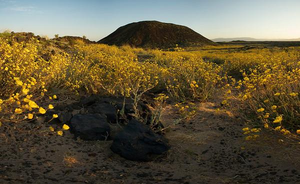 Amboy Crater At Sunset #1