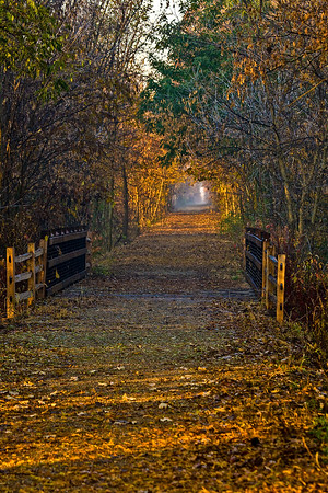 Trail into the Mystic Mist